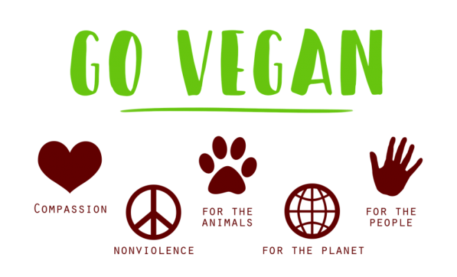 how-to-go-vegan-e1466538689406-1-660x400
